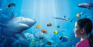 Sea Life Aquarium, Benalmádena!